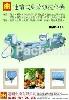 連續式葉菜類洗菜機(中型生產線)BMB-119