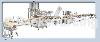 充填旋蓋包裝機 > 直線式12管自動充填旋蓋系統