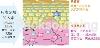 日本專利米萃取賽洛美-PhytoceramadieTM