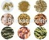 食品乾燥代工 > 蔬菜乾燥代工、水果乾燥代工、菇類乾燥代工、五穀雜糧乾燥代工-華國冷凍乾燥股份有限公司